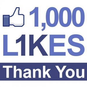 facebook 1000 followers